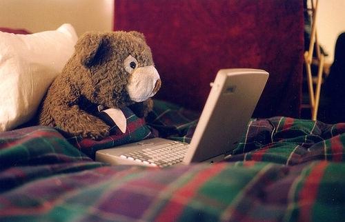 lone-bear-computer